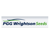 Seed | Wrightson Seeds